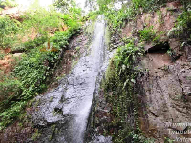 Kailasakona Waterfalls