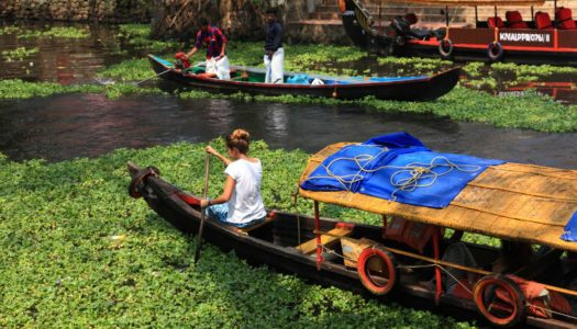20 Exciting Things to do in Alleppey on your Vacation