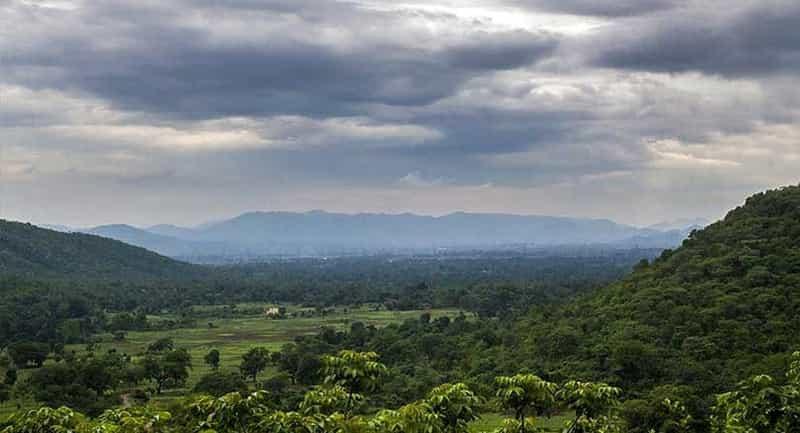 Dalma Hills