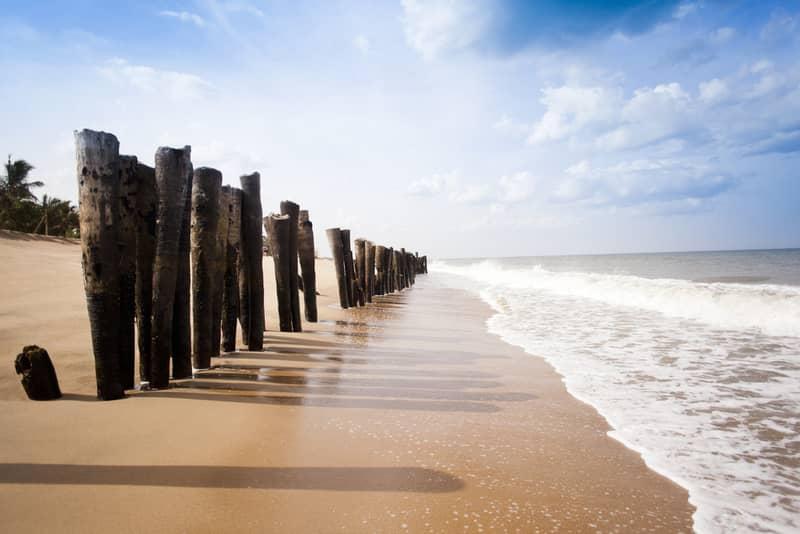 Wooden posts on the beach, Pondicherry