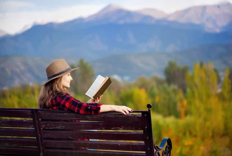 Traveler Reading