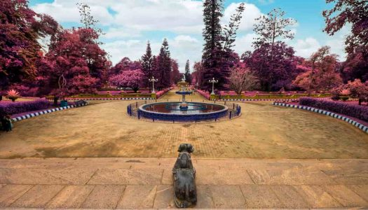 The 9 Most Beautiful Parks in Bangalore