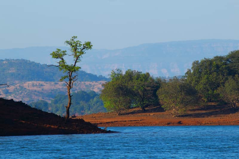 Backwaters of Koyna Dam