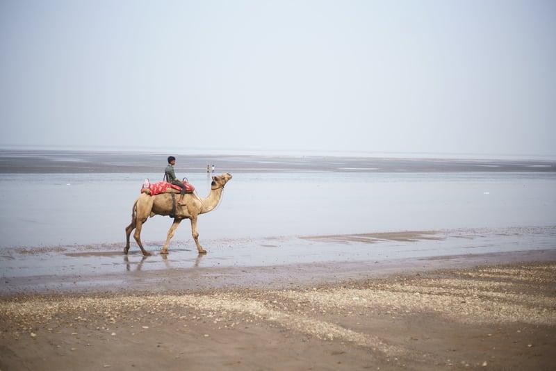 Daman has recently become a popular tourist destination