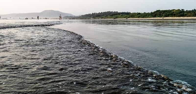 Diveagar, Maharashtra