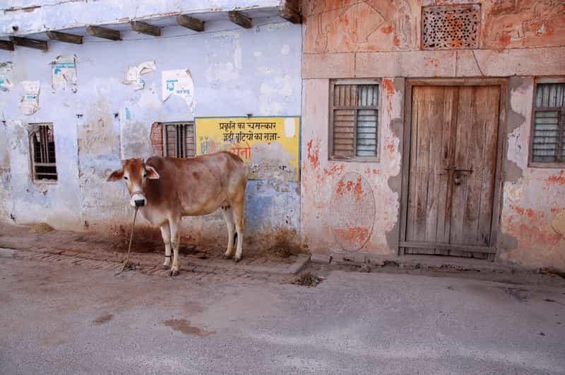 Garhmukteshwar