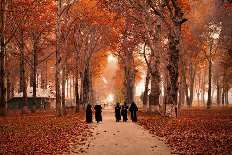 Kashmir, India