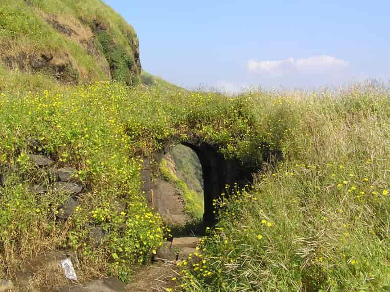 Ratangad Fort, Ratangad