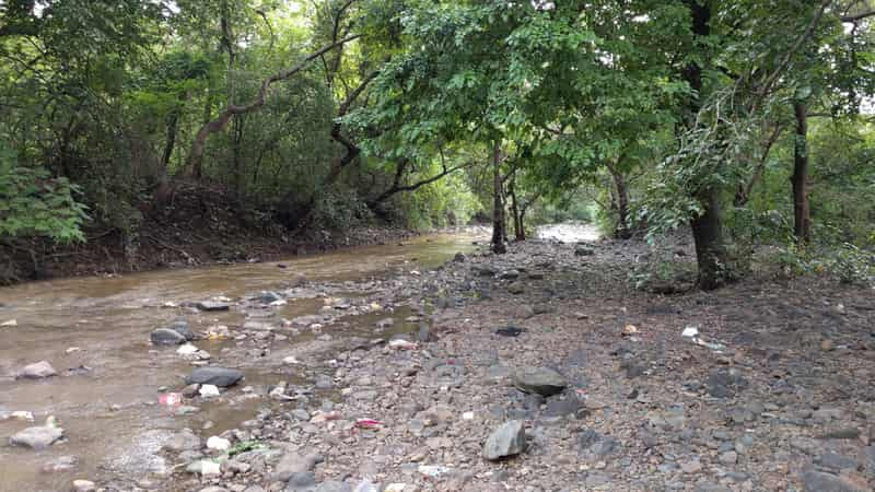 Trekking trail at Tungareshwar