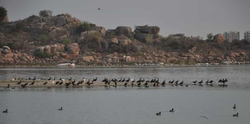 Ameenpur Lake