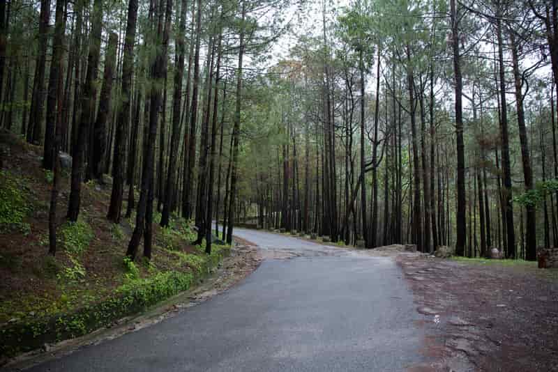 Lansdowne in Uttarakhand