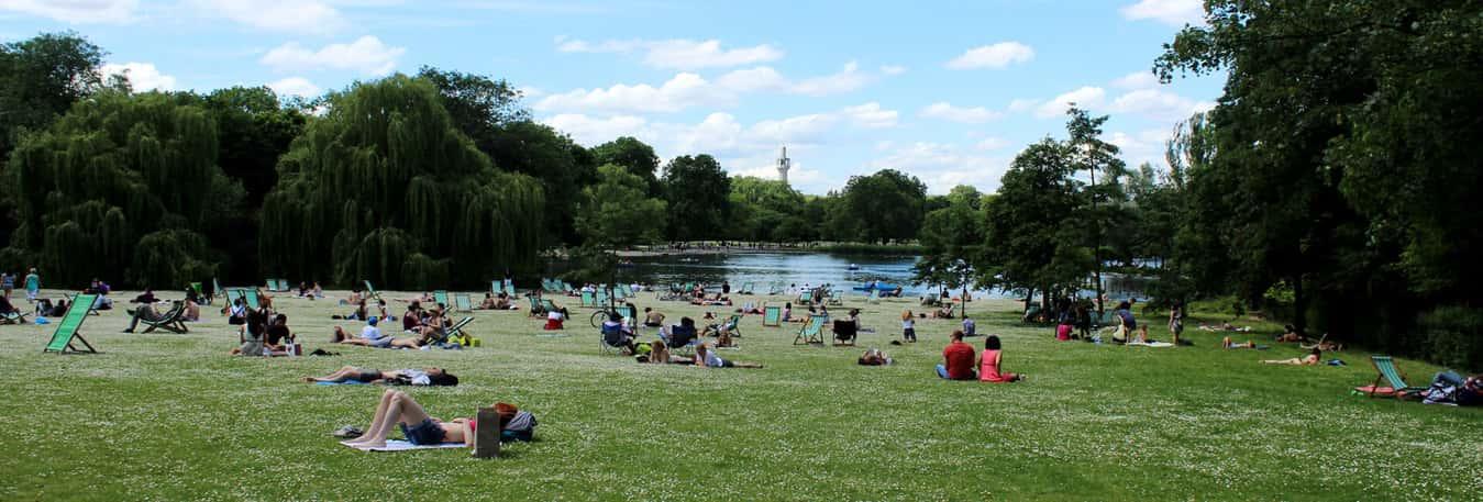 favorite picnic spot