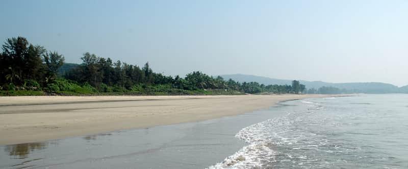 The Rewas Beach landscape