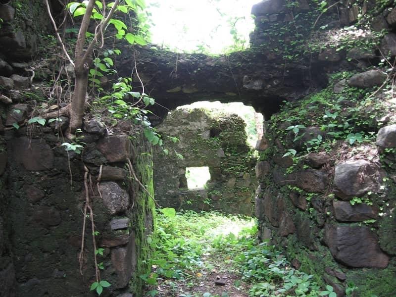 The Scenic Belapur Fort