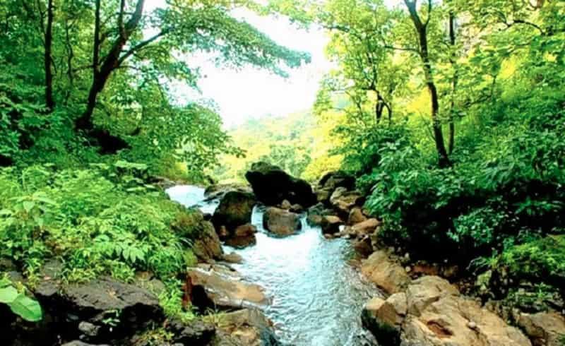 The creek at Durshet