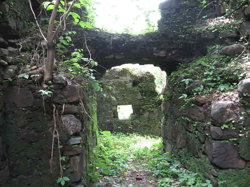 The fort enveloped in greenery
