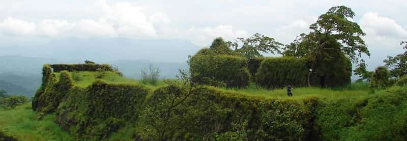 The lush greenery provides a scenic and romantic backdrop