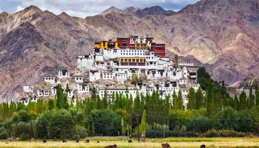 20 Perfect Places to visit in Leh Ladakh