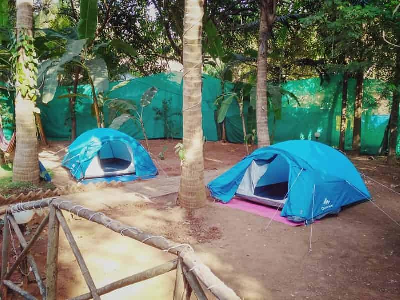 Camping in Goa