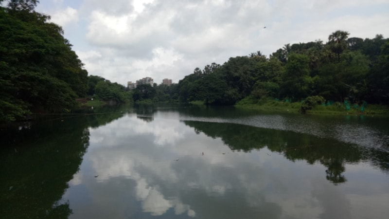 Hike The Shilonda Trail at Sanjay Gandhi National Park