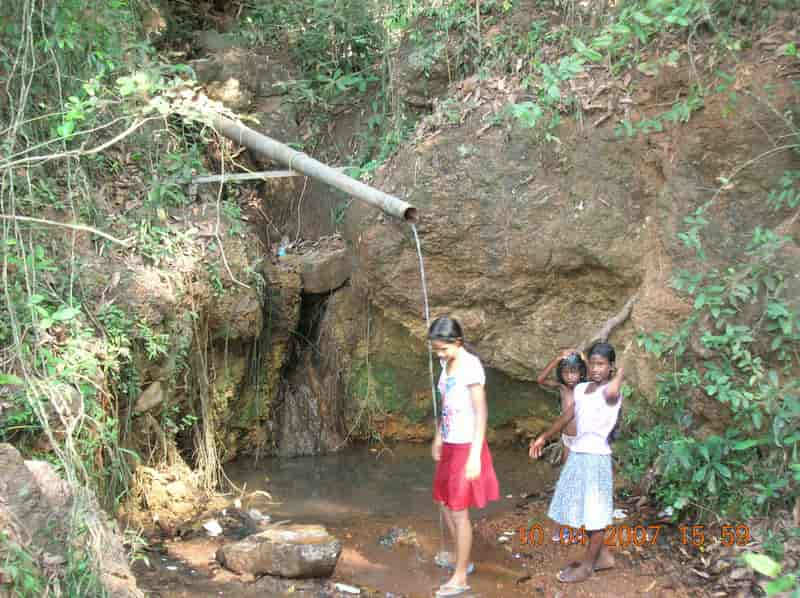 Medicinal Springs