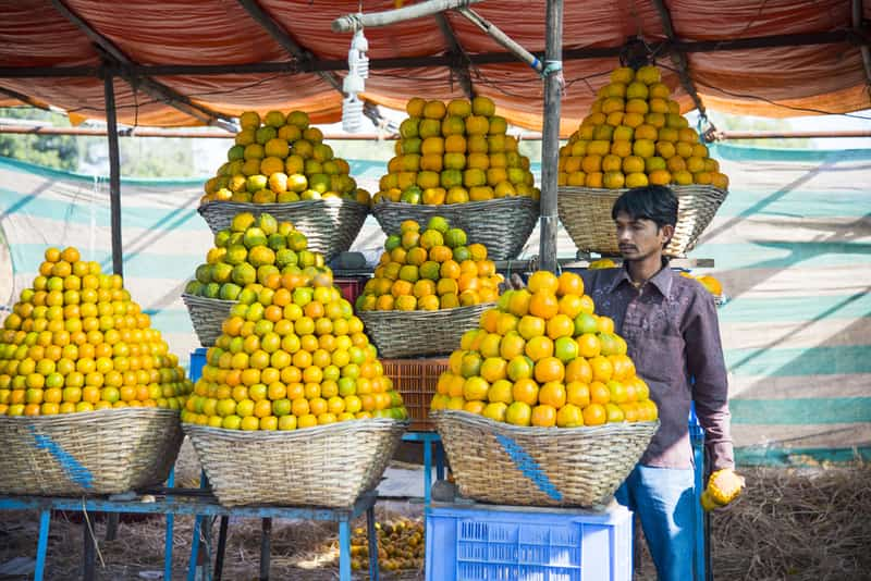 Nagpur gets its name 'Orange City' from its famed produce