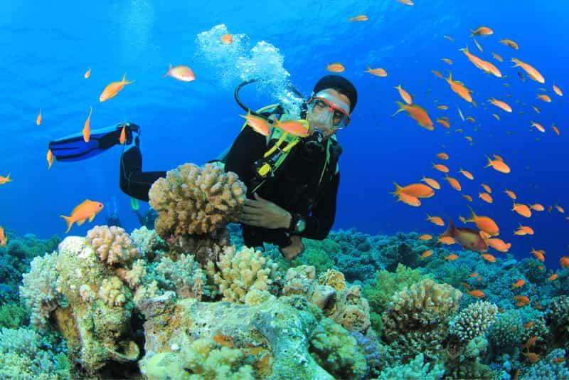 Uma Guma Reef