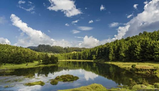 The Top 20 Honeymoon Destinations near Bangalore