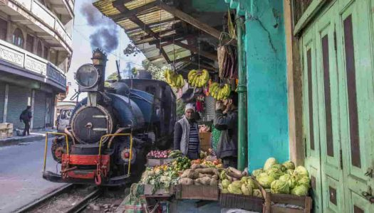 8 Things to Buy in Darjeeling & Where To Shop