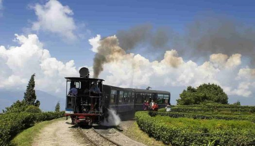 Best Time To Visit Darjeeling & Things To Do In Each Season