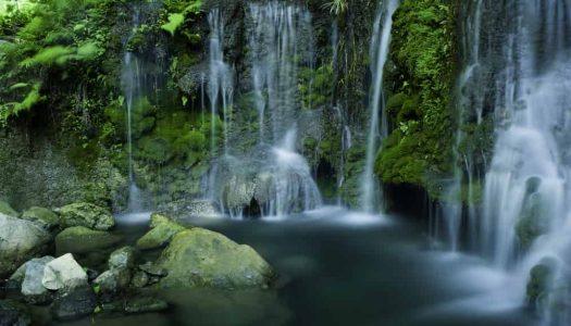 20 Majestic Waterfalls near Chennai
