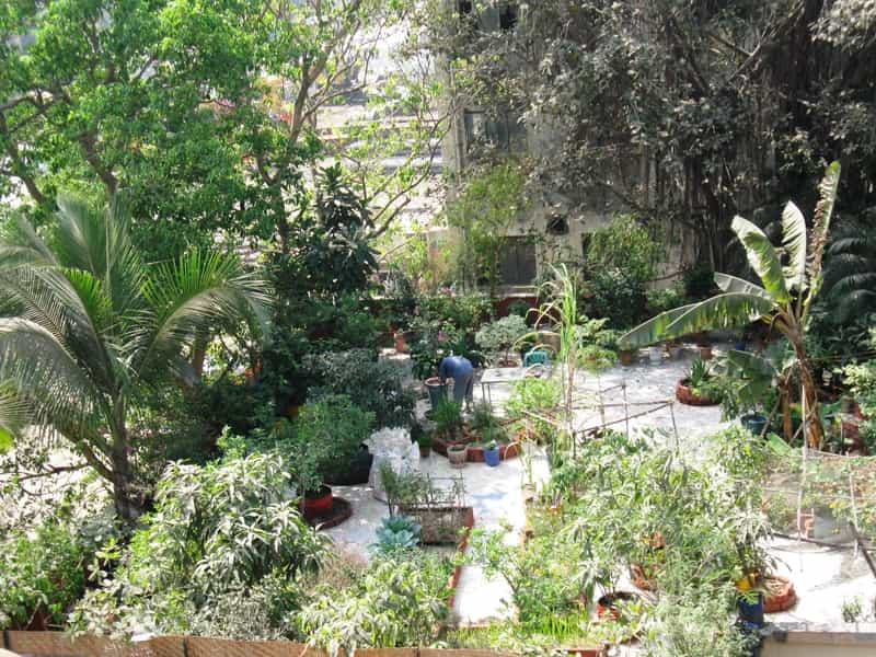 One of the most beautiful gardens in Mumbai
