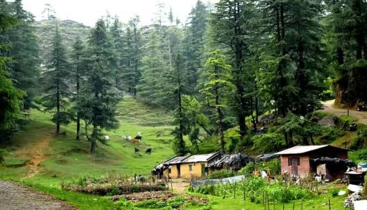 13 Top Things To Do In Mussoorie On An Awesome Adventure