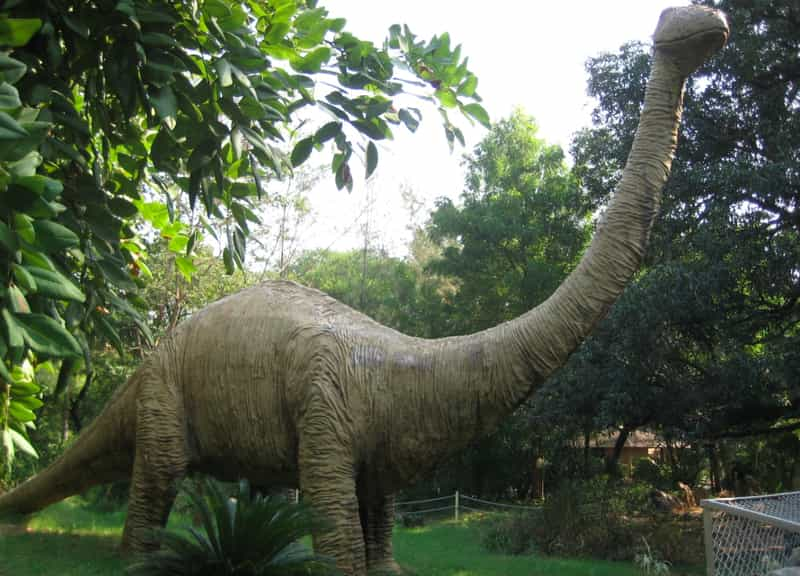 A replica of a dinosaur at Indroda Nature Park