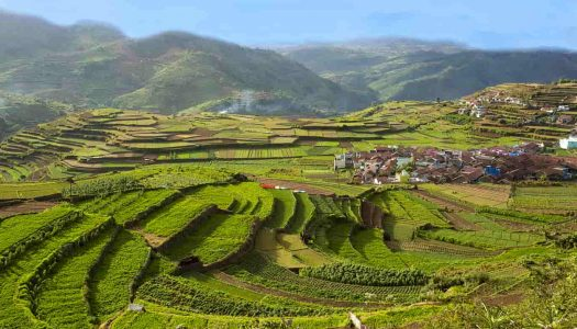 16 Places To Visit In Kodaikanal For One Day