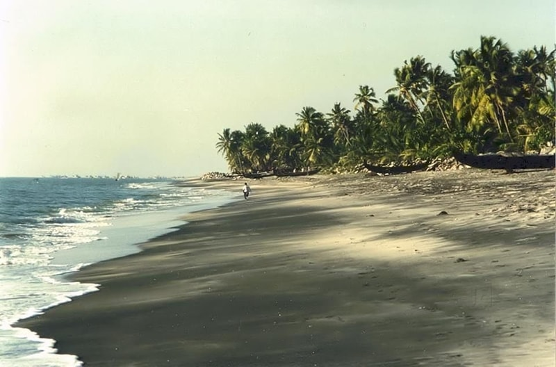 Thottappally Beach