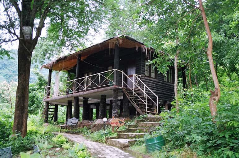 Tyda Jungle Bells Nature Camp
