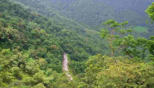 17 Places To Visit In And Around Wayanad