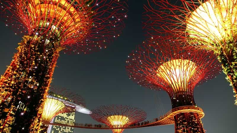 Visit the Garden by the Bay in Singapore