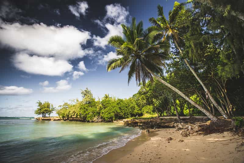 Explore the lovely beaches of Hawaii