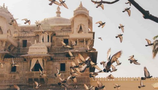 16 Best Places To See In Udaipur In One Day